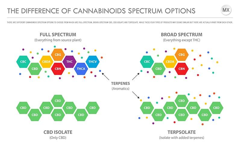 CBD Spectrum Chart